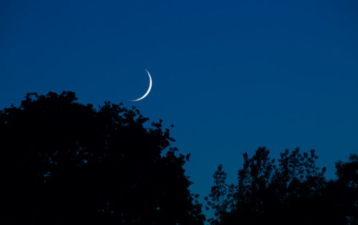Crescent moon setting.