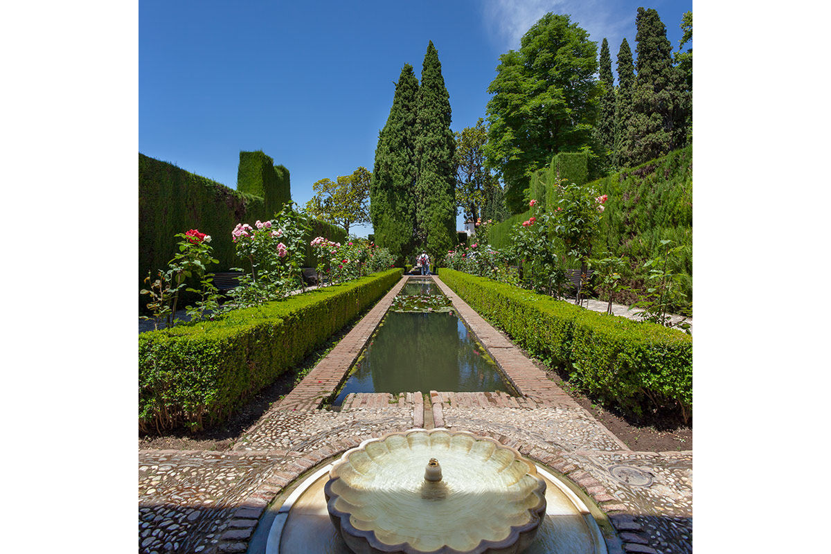A garden in The Alhambra, Grenada, Spain.